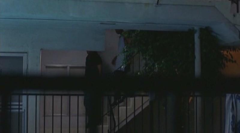 Samuel L. Jackson i Chris Tucker w filmie Jackie Brown - recenzja