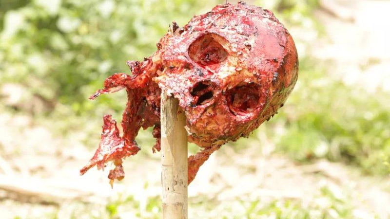 czaszka nabita na kij