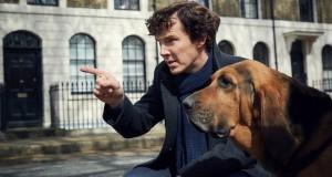 Benedict Cumberbatch i pies w Sherlock 4x01.
