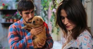 Sadece Sen (2014), reż. Hakan Yonat.
