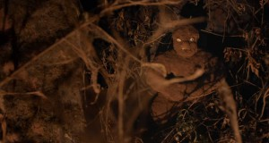 Tumbbad (2018), reż. Rahi Anil Barve, Anand Gandhi, Adesh Prasad.